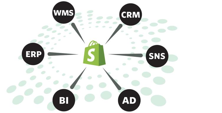 shopify_site_graph_one_v1-3